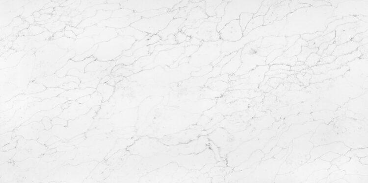 bianco-venatino-AQ9742