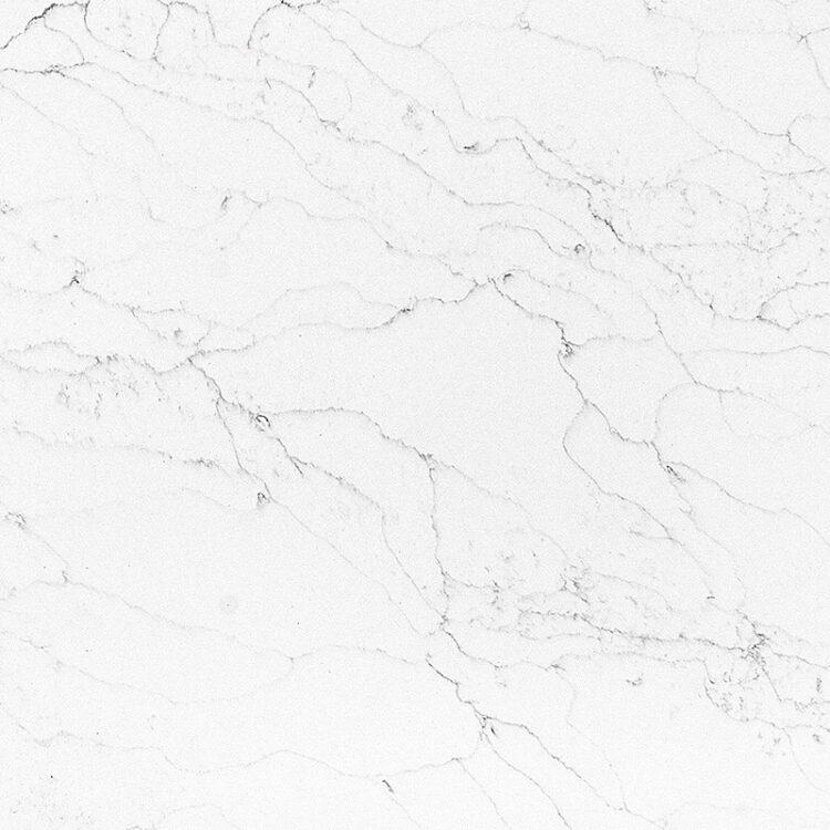 closeup-bianco-venatino-AQ9742