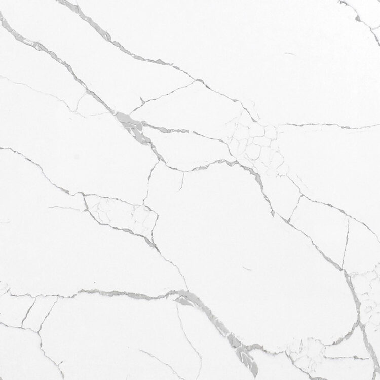 closeup-calacatta-primo-AQ9784
